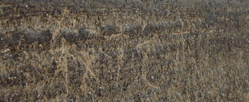西院大垣の画像