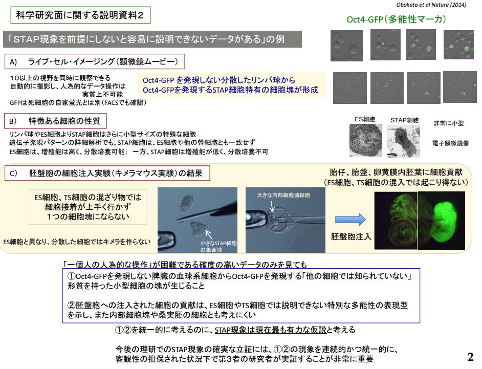 会見資料の画像2