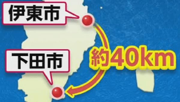 伊東市~下田市の距離と地図の画像
