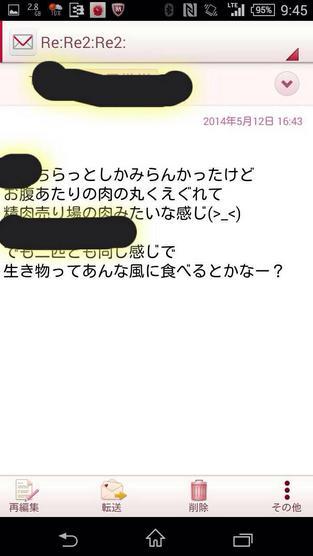 徳勝もなみの猫解剖疑惑についてのメール内容