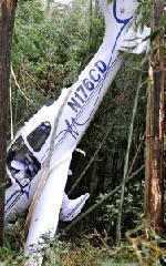 墜落した飛行機の画像