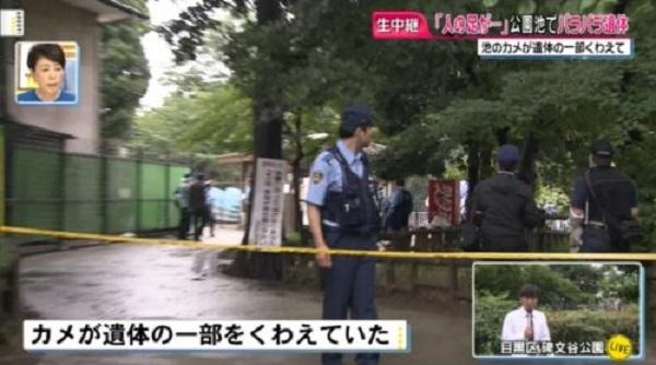 碑文谷公園の弁天池でバラバラ遺体が見つかった殺人事件ニュースのキャプチャ画像