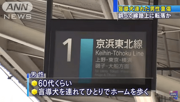 京浜東北線の蕨駅の盲導犬連れた男性が線路に転落する人身事故ニュースのキャプチャ画像