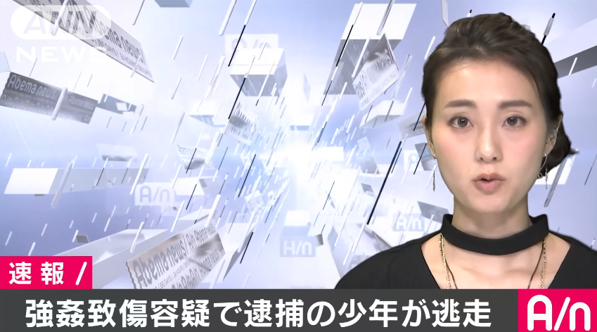 函館市富岡町の函館市医師会病院から強姦魔の少年が逃走したニュースのキャプチャ画像