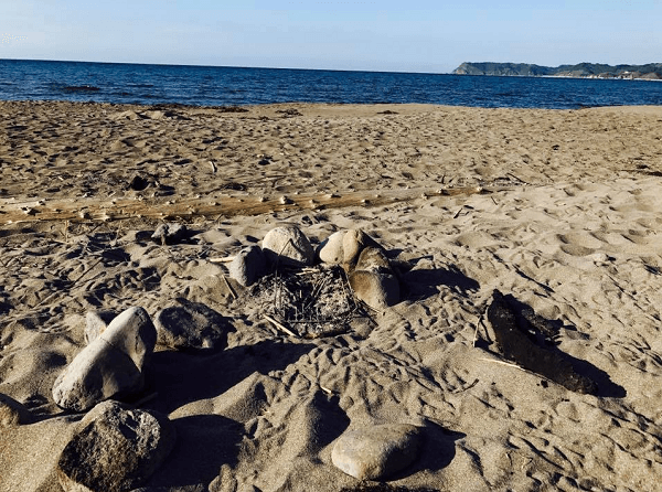 北海道積丹町西河町の砂浜に火のついた炭が放置されている画像