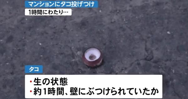 札幌市中央区でタコ投げつけ事件のニュースのキャプチャ画像