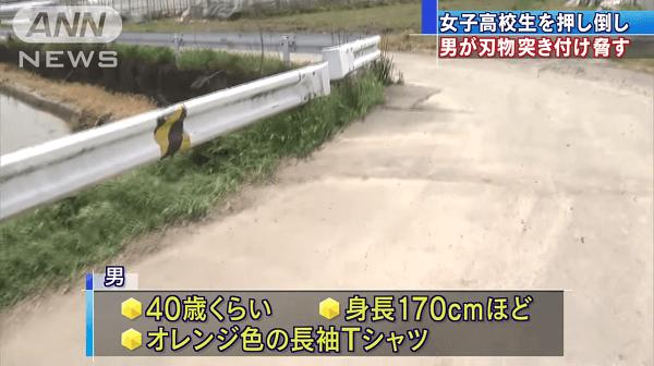 新潟市東区で強制わいせつ致傷事件のニュースのキャプチャ画像