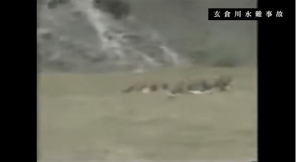 DQNの川流れで男女18人が濁流に流されているニュースのキャプチャ画像
