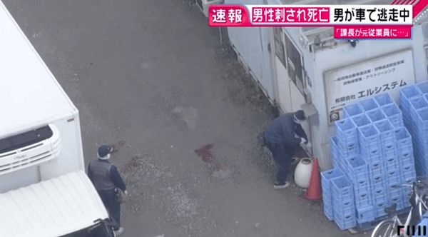 高槻市のエルシステムで殺人事件が起きたニュースのキャプチャ画像